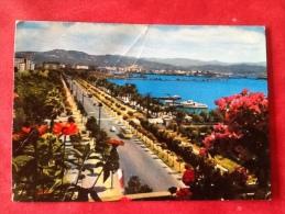 Italia La Spezia. Viale Italia. Carte Pliée - La Spezia