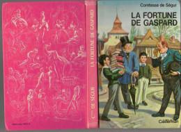 LA FORTUNE DE GASPARD...ILLUSTRE  JOBBE DUVAL.CARTONNE.1980. . CASTERMAN..CONTESSE DE SEGUR - Bibliothèque Rose