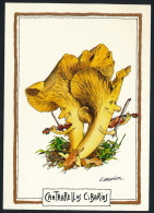 Champignons Mushrooms Cartoon Violin Pilze Geige R. Sabatier Unused °AK0016 - Fleurs, Plantes & Arbres