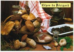 Recette Recipe Cepes Du Perigord Food Hand Mill Handmühle Mushrooms Pilze °AK0075 - Küchenrezepte