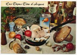 Recette Recipe Food Vegetable Wine Mushrooms Pilze °AK0089 - Küchenrezepte