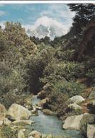 Water-Spring, Swat Valley, Hindu Kush Mountains, AFGHANISTAN, 50-70'S - Afghanistan