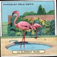CHROMO FELIX POTIN - N°13 LE FLAMENT ROSE - Félix Potin