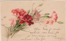 Cpa Catherina Klein - Bouquet D´oeillets 1906 - Klein, Catharina