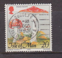 Großbritannien - ISLE OF MAN 1995 / Mi: 653 /  Königin Elisabeth II / GR 250 - 1952-.... (Elisabeth II.)