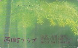 Télécarte Japon / 110-168040 - Motif Model 110-149 - Arbre Bambou / 2 Scans Japan Phonecard Telefonkarte - No MD 2138 - Fleurs