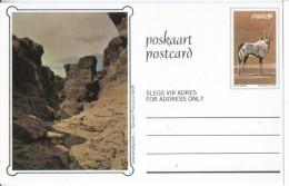SWA Postcard 1980 Landschaft Oryx - Neufs