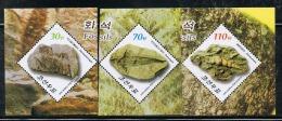 NORTH KOREA 2013 FOSSILS STAMP SET - Fossili