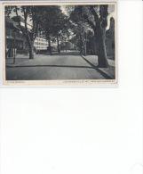 Schneidemühl - Jastrower-Allee .. 1941 - Westpreussen
