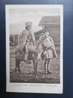 1916. THE ROMANIAN SHEPHERD - Völker & Typen
