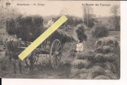 Middelkerke Flandres Flandern La Rentrée Des Fourages Carte D´un Soldat Allemand Ww1 14/18 1914/1918 1.wk Poilus - Middelkerke