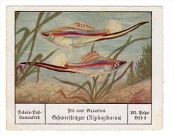 Palmin (ca 1930) - 102 - Für Euer Aquarium - 3 - Schwertträger - Chromos