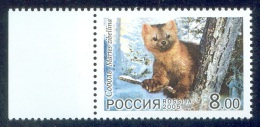 RUSSIA 2005 Stamp MNH (**) VF JOINT KOREA NORTH FAUNA SOBOL SABLE ZIBELINE ZOBEL ANIMAL ANIMAUX MAMMAL MAMMALS - Joint Issues