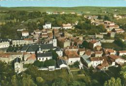 MIGNE-AUXANCES     EN AVION AU-DESSUS DE .........( VUE GENERALE ) - Autres Communes
