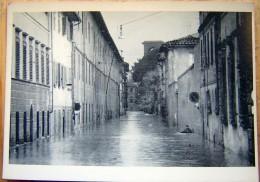 Cpm FIRENZE - Via Tripoli 4/11/1966 - ( Alluvione ) - Firenze (Florence)
