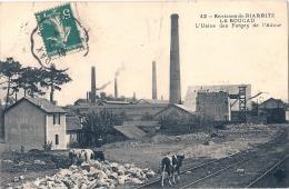 Environs De Biarritz - LE BOUCAU  L'usine Des Forges De L'adour- écrite TTB Et Vaches En Pâture - France