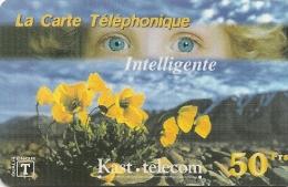 CARTE-PREPAYEE-50F-KAST TELECOM-YEUX -FLEURS JAUNES-07/2000 - T BE- - Fleurs