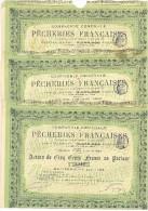 TITRE LT2---LOT DE 3 ACTIONS :  Pêcheries Françaises - Shareholdings