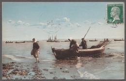 85 / AIGUILLON SUR MER(L') / Pêche Des Moules - France