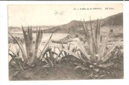 Gorges De La Chiffa   (Algérie) - Other