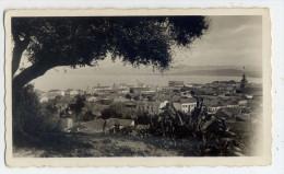 Alg�rie--JIJEL--DJIDJELLI---Vue g�n�rale---petite photo de type cpsm  format   110mm x 65mm--n�48