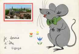 LIGUGE (86) Cpsm Humoristique à Vue Souris - France