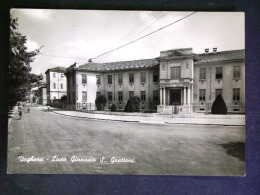 LOMBARDIA -PAVIA -VOGHERA -F.G. LOTTO N°351 - Pavia