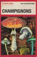 Le Petit Guide Des Champignons 1977 - Nature