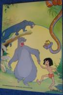 Jungle Book Livre Jungle - Disney