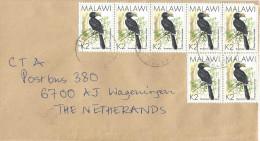 Malawi 2004 Lilongwe Silvery Cheeked Hornbill Bird Cover - Climbing Birds