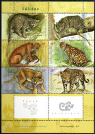 Argentinien/Argentina  2001,Wild Katzen, Mi.Nr. 2665/70 Postfrisch/mint - Argentinien