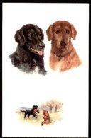 CPA Chien, Chiens - R. Tuck - OILETTE - N° 8669 - Chiens De Chasse RETRIEVERS - By Maud West WATSON - Chiens