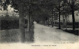 91-  RIS-ORANGIS- Avenue De Talouêt - Ris Orangis