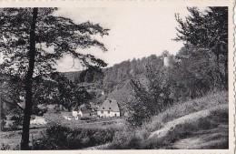 Belgique - Beaumont - Chemin Des Baudets Et Vieux Moulin - Beaumont