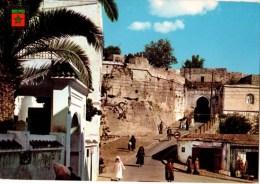 C P M----MAROC---TANGER  Entrée De La Kasbah Ancien Chateau De York---voir 2 Scans - Tanger