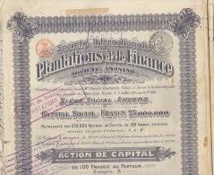 5X Internationale De Plantations Et De Finance - Afrique