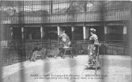 - 3 - PARIS - Jardin Zoologique D´Acclimatation - BOSTOCK´S Jungle - La Dompteuse DORCY Avec Nély Lionne De Nubie .... - Parchi, Giardini
