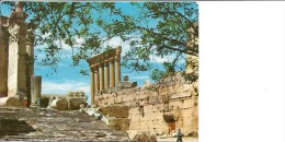 Lebanon  Baalbeck  Bacchus Temple     b-2897