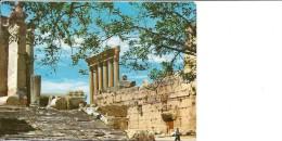 Lebanon  Baalbeck  Bacchus Temple     B-2897 - Lebanon