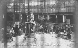 - 10 - PARIS - Jardin Zoologique D´Acclimatation - BOSTOCK´S Jungle - Le Dompteur GAILLARD Et Ses Lions Et Tigres Royaux - Parchi, Giardini