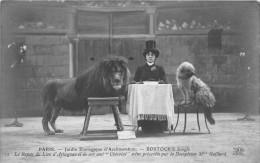 - 28 - PARIS - Jardin Zoologique D´Acclimatation - BOSTOCK´S Jungle - La Dompteuse Mme Gaillard - Lion Et Chien - Parchi, Giardini
