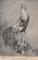 - 299 - Dédié Au Généra Joffre  -  Pour Le Droit Et Pour La Liberté - E. Juillerat , Pinx 1914 - COQ , Casque Allemand - Patriottiche