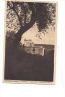 S-75 SICILIA ACIREALE Colleggio Pennisi CATANIA 1933 Viaggiata - Acireale