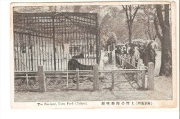 Postal De Tokyo, Zoo. - Tokyo