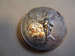 Médaille Bronze/ Concours De Bébés/Beauté /Force / Santé/ALENCON/Orne/ 1904       PARF60 - France