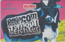 Belgacom  Torhout Werchter 1997   Koe    Humo - Muziek