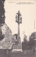22494 PONT SCORFF - Le Monument Aux Morts  Guerre 1914 1918  -coll Marcelle Lédan - - Pont Scorff