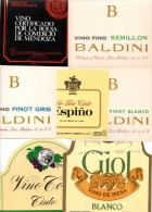 Lot De 7 étiquettes De Vin D´Argentine. - Colecciones & Series