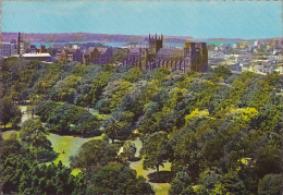 Overlookin Hyde Park To St Mary's Cathedral Sydney Australia - Sydney