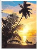 Polynésie Française COUCHER De SOLEIL (arbre Arbres Tree Trees Sunset )( Photo TEVA SYLVAIN N°2)*PRIX FIXE - Polynésie Française